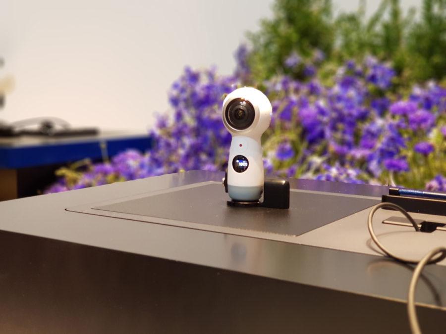 Пример фото с камеры Samsung Galaxy Note 8 (размытие фона 2)