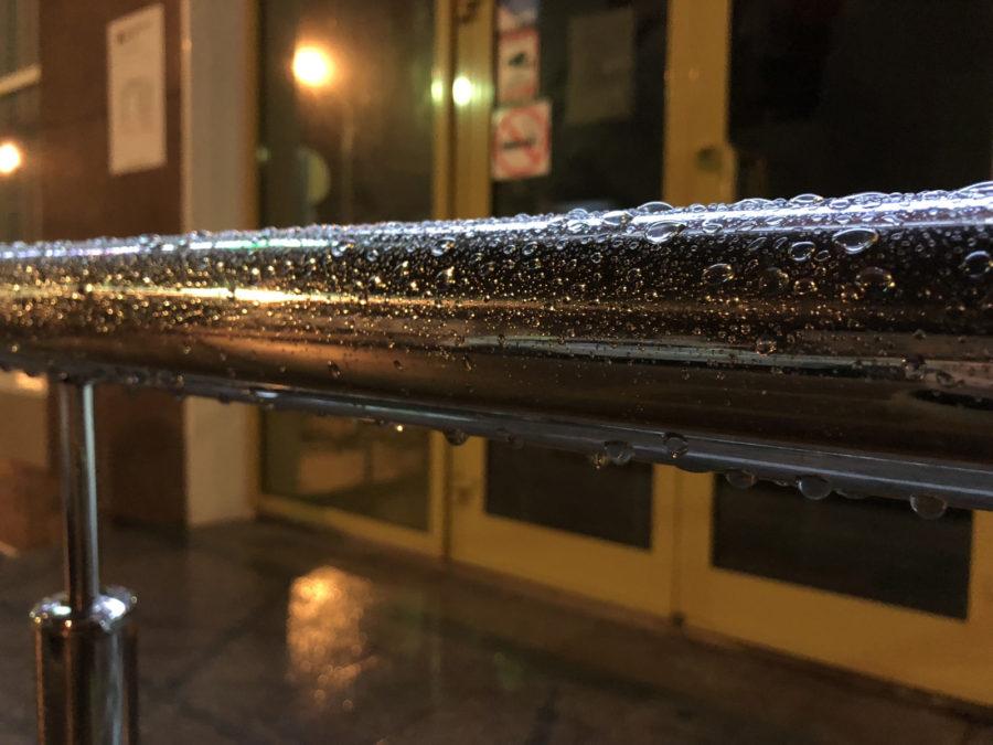 Ночное макро, снятое на iPhone 8
