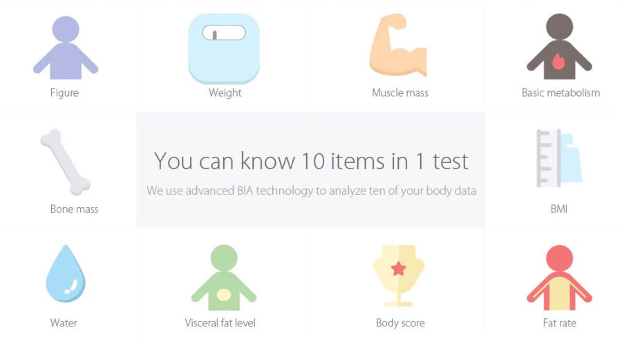 Показатели, которые считают умные весы от Xiaomi