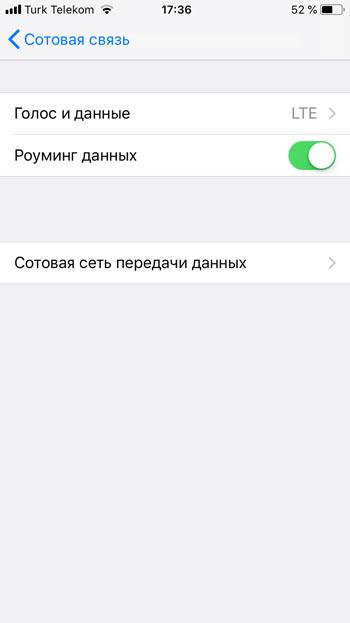 Включение роуминга данных в настройках iPhone для работы Flexiroam