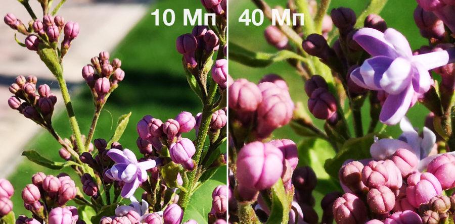 100-процентные кропы - сравнение детализации снимков на 10 Мп (слева) и 40 Мп (справа)