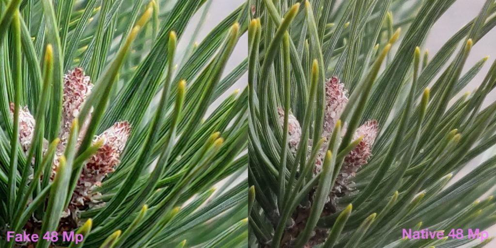 Два кропа: искусственный, сделанный из 12 Мп фото и нативный, из 48 Мп (макро)