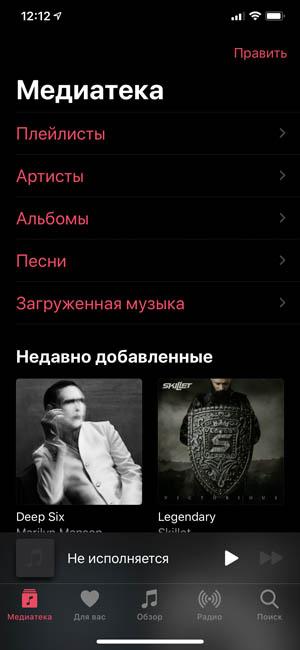 Приложение Музыка iOS на iPhone