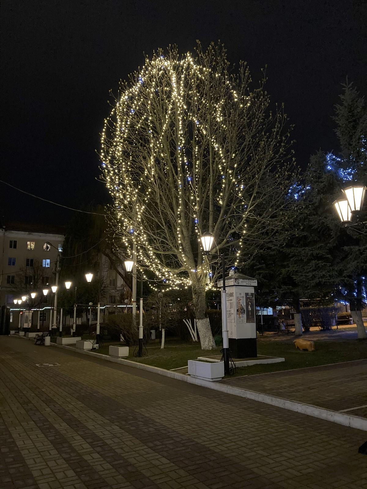 Пример ночного фото с камеры iPhone SE 2