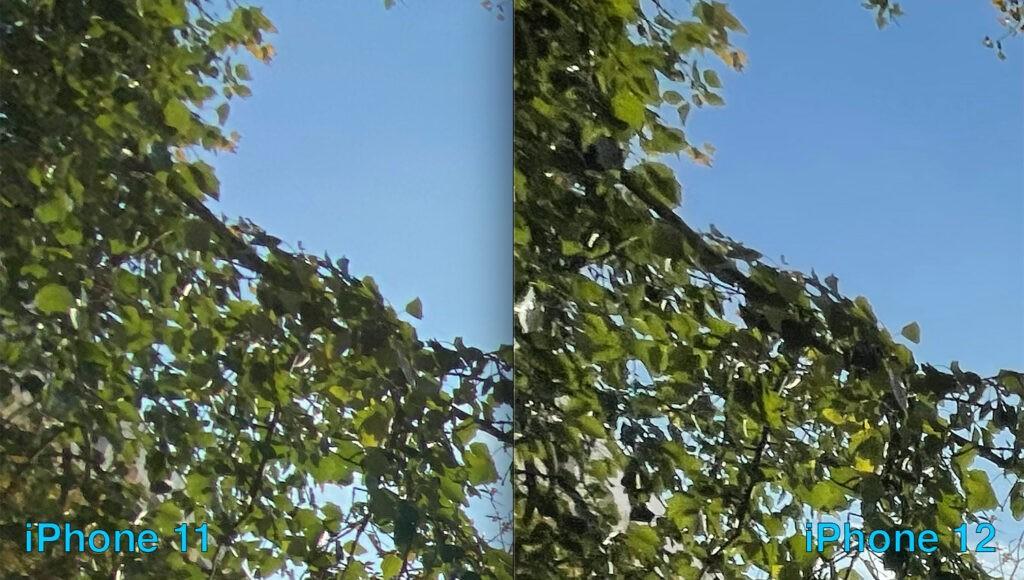 Сравнение широкоугольных камер iPhone 12 и 11 (искажения 2)