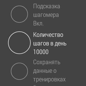 Шагометр 2