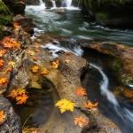 bagshaw_battaile_falls