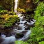 bagshaw_ruckel_creek_falls