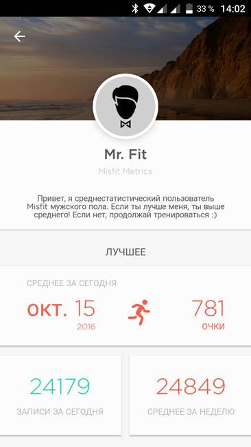 Среднестатистический профиль Misfit - Mr. Fit