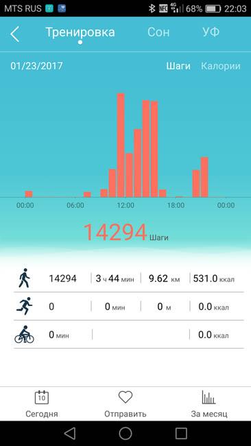 Подробная статистика активности за день в приложении Color Band A1