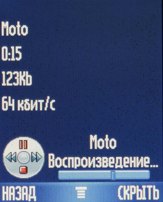 _MG_1804