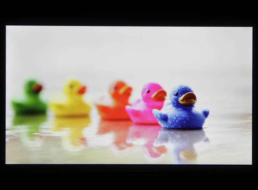Экран Sony Xperia M2 (цвета)